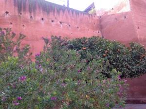 Gardens inside mausoleum