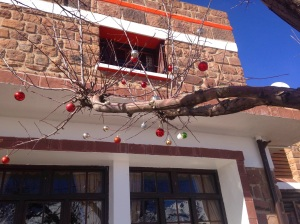 Baubles on the branches at the cafe where we got lunch.