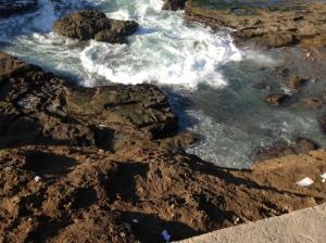 Very rocky coastline!