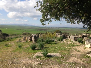 Countryside surrounding Volubilis (Old Roman City ruins)