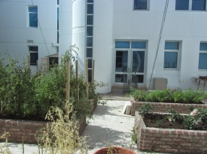 courtyard garden at TAISM