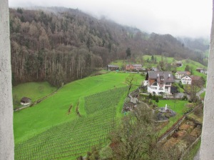 vineyards and forest surrounding the castle