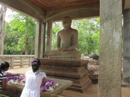 Lotus flower offerings in front of the buddha